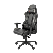 Gaming Chairs (2)